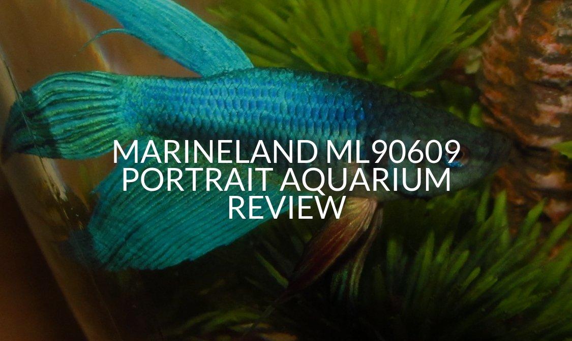 Marineland ML90609 Portrait Aquarium Review
